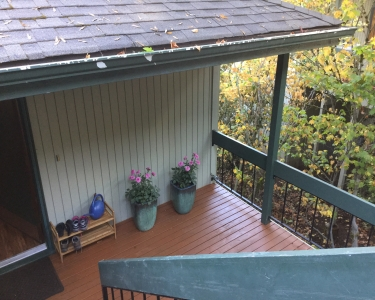 View Details of House Sitting Assignment in Eugene, Oregon