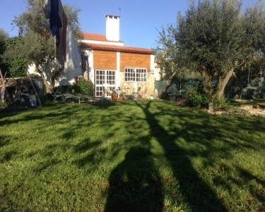 View Details of House Sitting Assignment in Santerem, Portugal