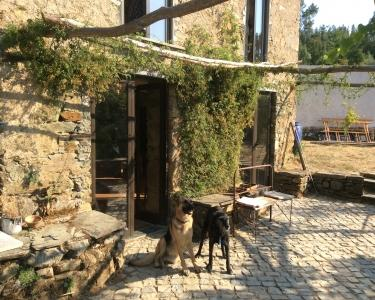 View Details of House Sitting Assignment in Oleiros, Portugal