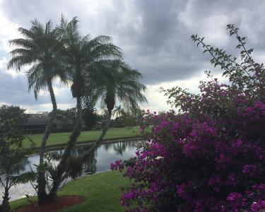 View Details of House Sitting Assignment in Palm Beach Gardens, Florida