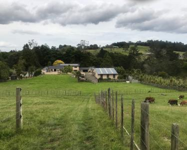 View Details of House Sitting Assignment in Massey, New Zealand