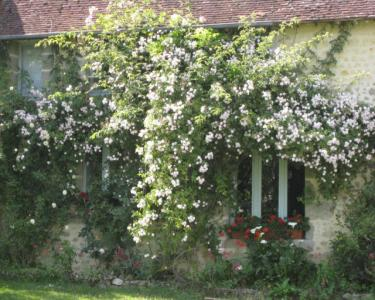 View Details of House Sitting Assignment in St Leger Sur Sarthe, France