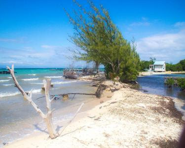 View Details of House Sitting Assignment in Stann Creek, Belize