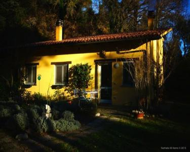 View Details of House Sitting Assignment in Ficulle(tr), Italy