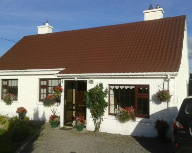 View Details of House Sitting Assignment in Portarlington, Ireland