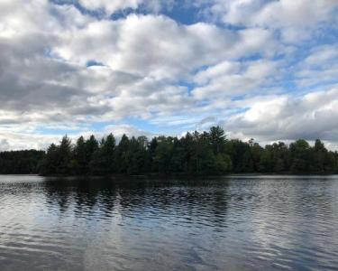 View Details of House Sitting Assignment in Rhinelander, Wisconsin
