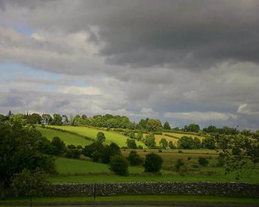 View Details of House Sitting Assignment in County Roscommon, Ireland