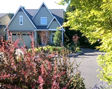 View Details of House Sitting Assignment in Olympia, Washington