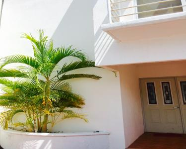 View Details of House Sitting Assignment in Cancun, Mexico