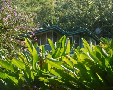 View Details of House Sitting Assignment in Hanalei, Hawaii