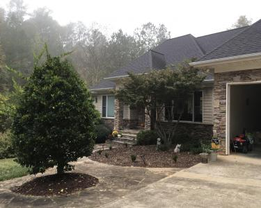 View Details of House Sitting Assignment in Mt Gilead, North Carolina
