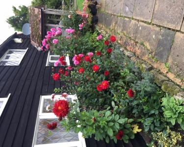View Details of House Sitting Assignment in West Sussex, United Kingdom