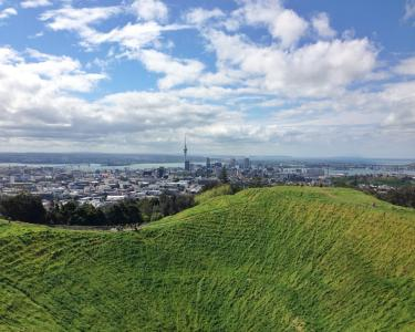 View Details of House Sitting Assignment in Flat Bush, Auckland, New Zealand